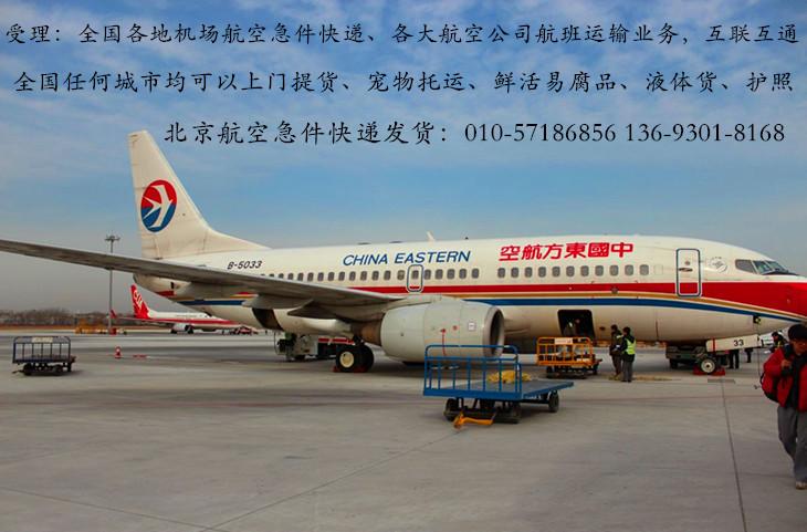 北京机场航空急件爱博体育官方下载——宠物托运